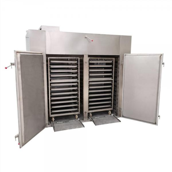 Industrial Automatic Sweet Potato Hot Air Mesh Belt Drying Machine Potato Chip Dryer