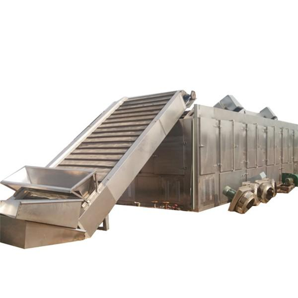 Continuous Belt Spices Drying Sterilizing Machine, Chili Powder Sterilizer, Spices Dryer