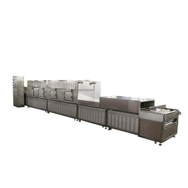 Continuous Belt Dryer for Fruit and Vegetables