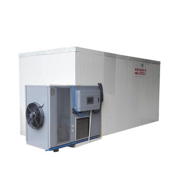 Tunnel Type Food Drying Equipment Dryer Fruits Vegetables Dehydrator