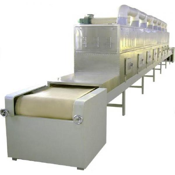 Customized different capacity three four layers conveyor mesh belt chain dryer