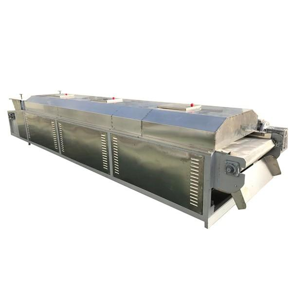 mushroom dryer machine double-layer Belt Dryer